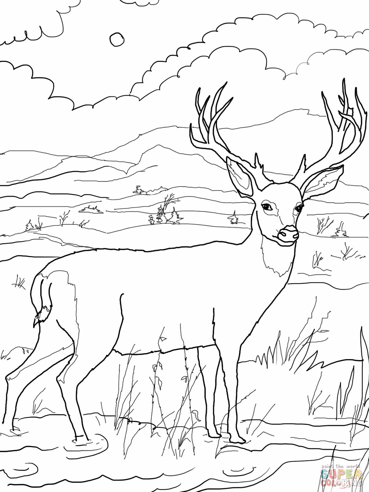 1200x1600 Deer Coloring Pages Inside Hunting Theotix Me New