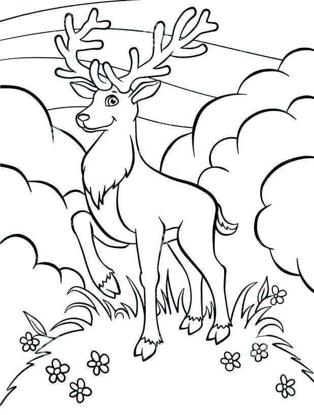 618x818 Deer Hunting Coloring Pages Deer Hunting Coloring Pages Pictures