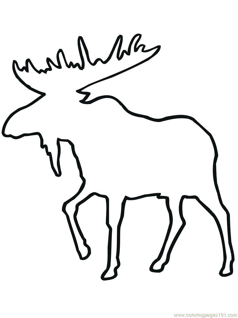 Deer Outline Drawing at GetDrawings Free for
