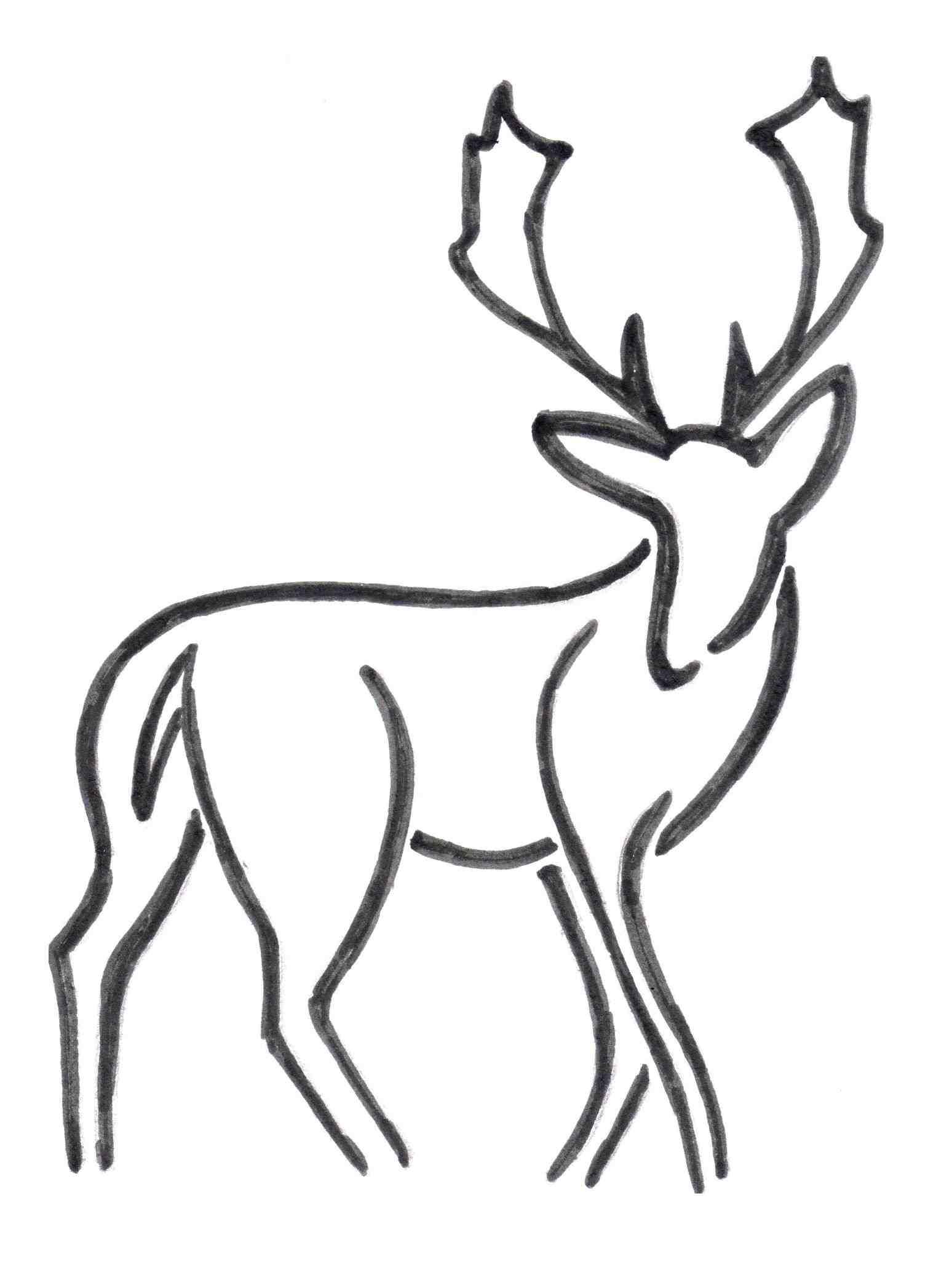1548x2054 Drawings Of Deer Antlers