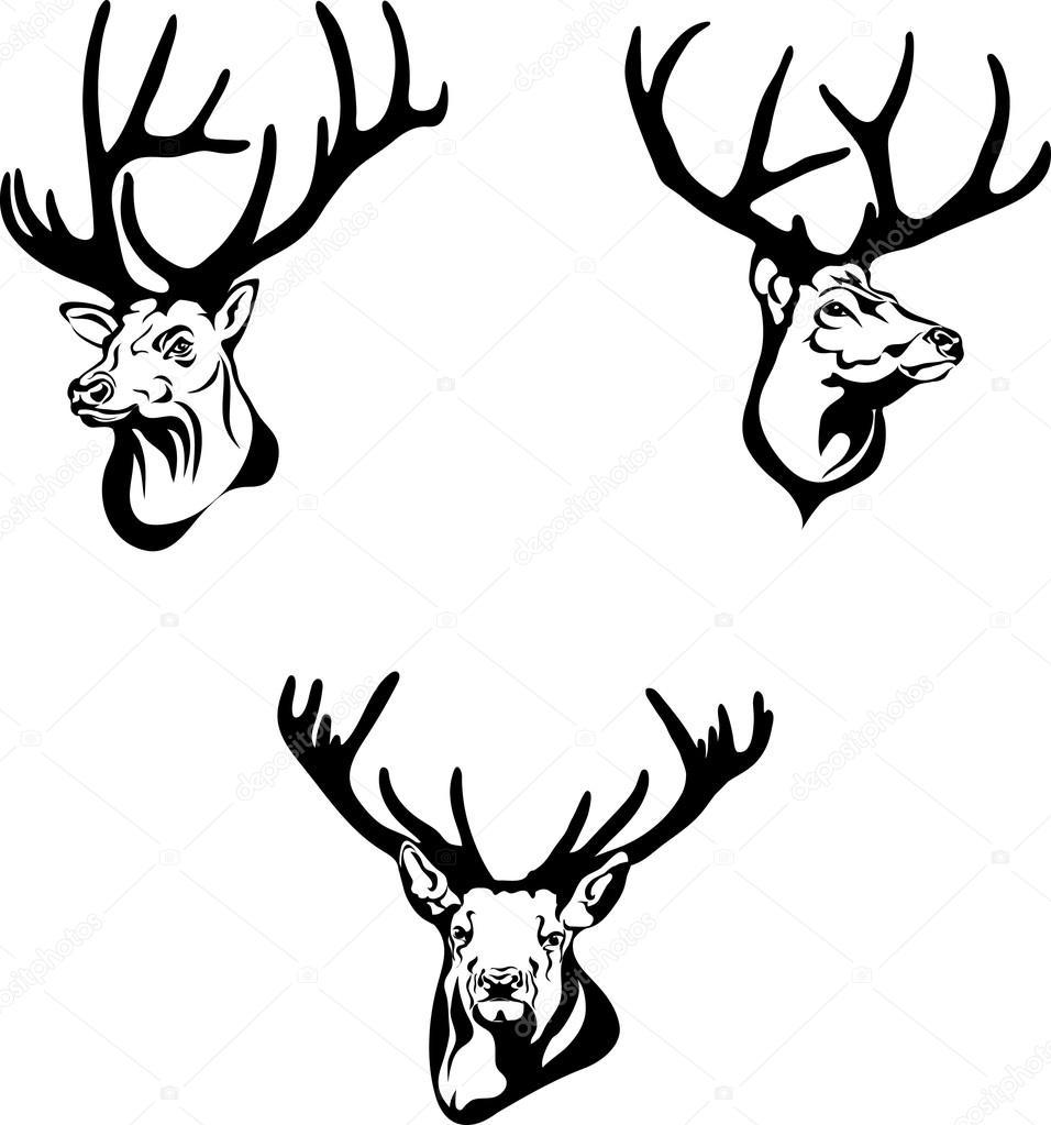 956x1023 Deer, Deer Drawing, Portrait, Vector, Illustration, Black