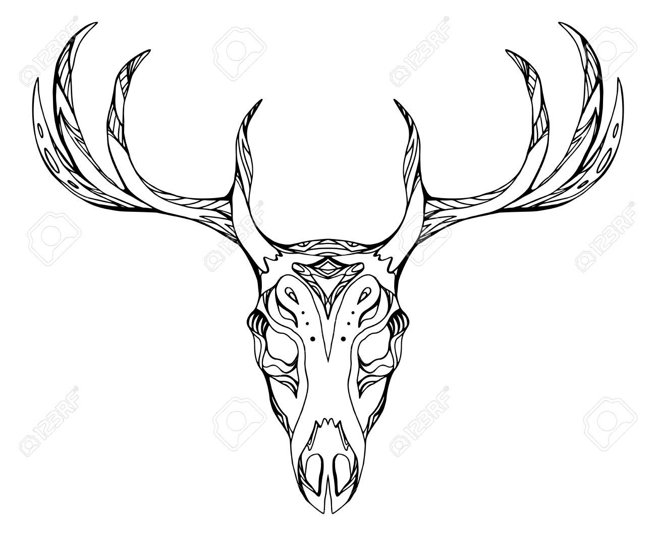 1300x1063 Contour Illustration Of A Deer Skull With Antlers With Boho
