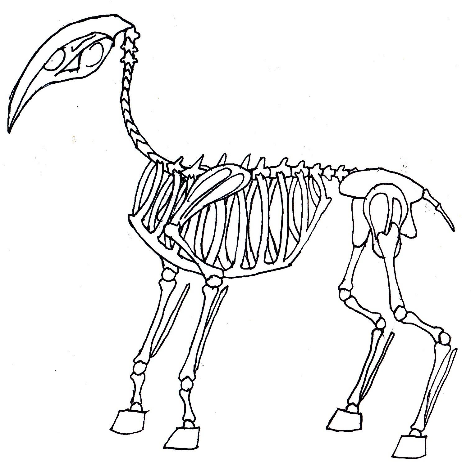 1516x1496 Deer Creature Skeleton By Thegmodgirl