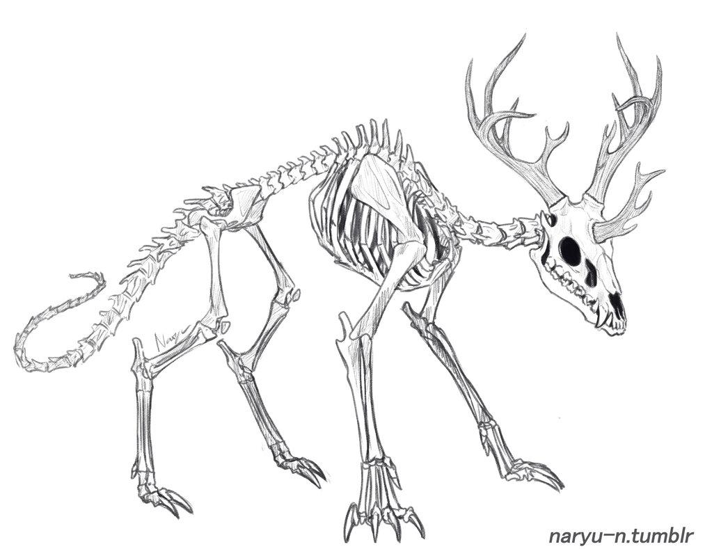 1013x789 Kirin Skeleton By Naryu N