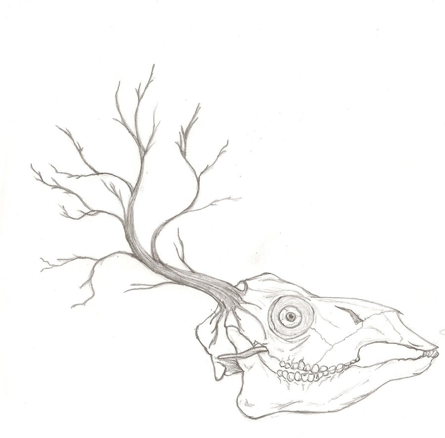 900x887 The Earth Is A Dead Deer Skull By Icrytentacles
