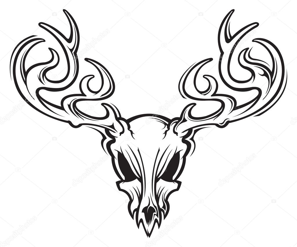 1024x853 Deer Skull Stock Vectors, Royalty Free Deer Skull Illustrations