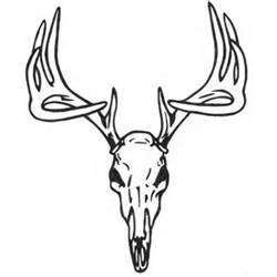 250x250 Deer Skull Drawing Clipart Panda