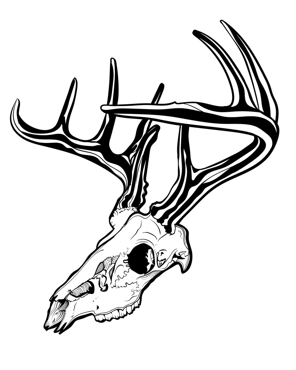 1000x1250 Deer Skull Cody Johnson