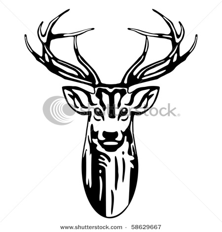 450x470 Stag Clipart Deer Skull