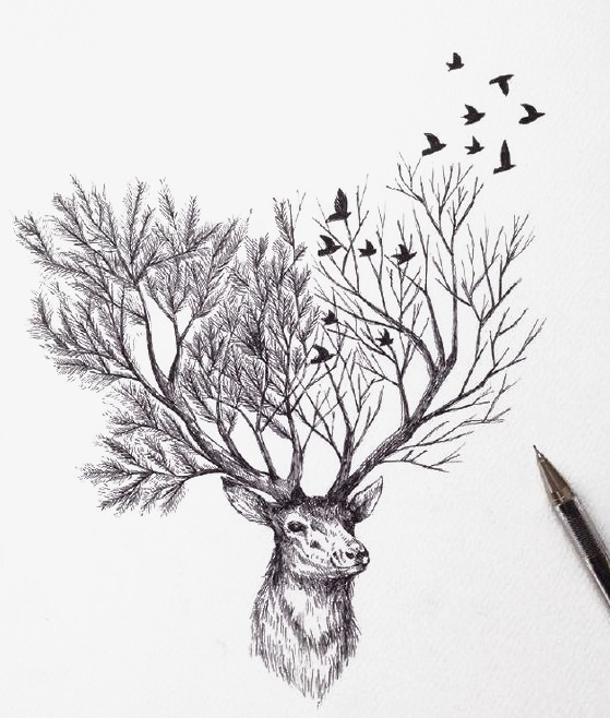 559x658 Hand Painted Elk, Branches, Pencil Drawing, Asuka Png Image