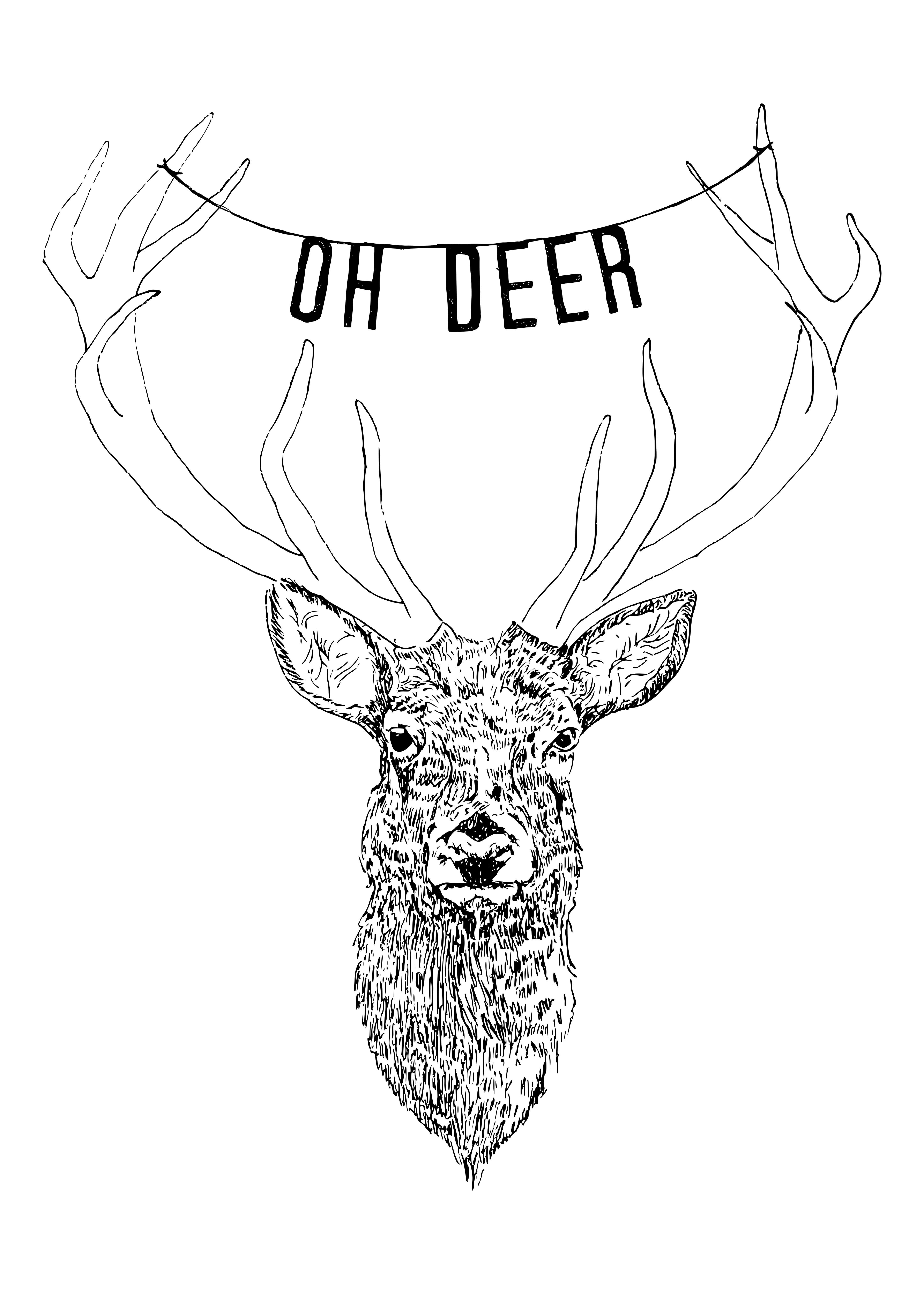 4496x6295 Oh Deer Illustration Illustration Deer