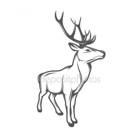 450x450 Antler Stock Vectors, Royalty Free Antler Illustrations