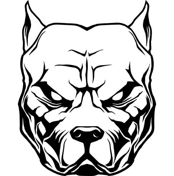 570x574 Dog Drawing Mean Demon Dog Drawings