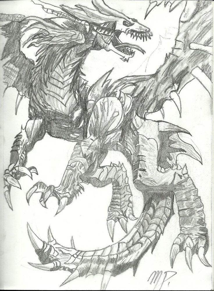 736x998 9 Best DRAGON DRAWLINGS Images On Pinterest Dragon Drawings