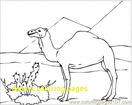 454x360 Desert Coloring Pages With Desert Animals Coloring Page Roxaboxen