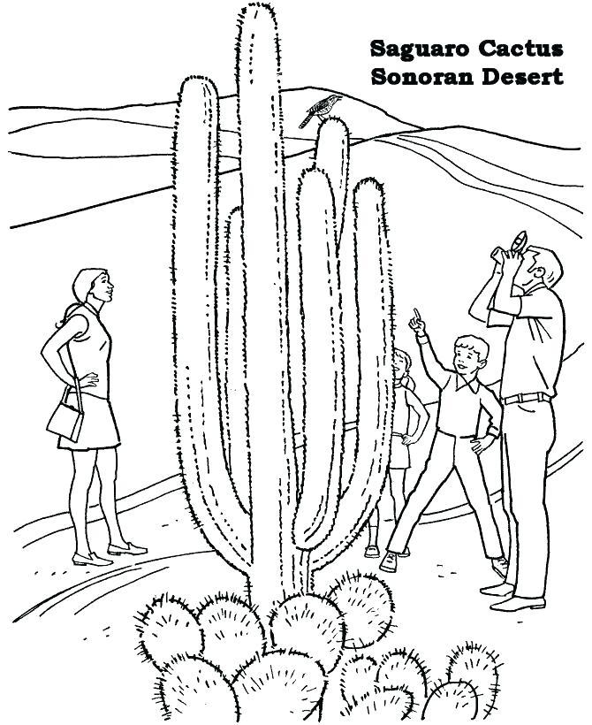 670x820 Desert Coloring Pages Desert Coloring Pages For Kids 3 Desert