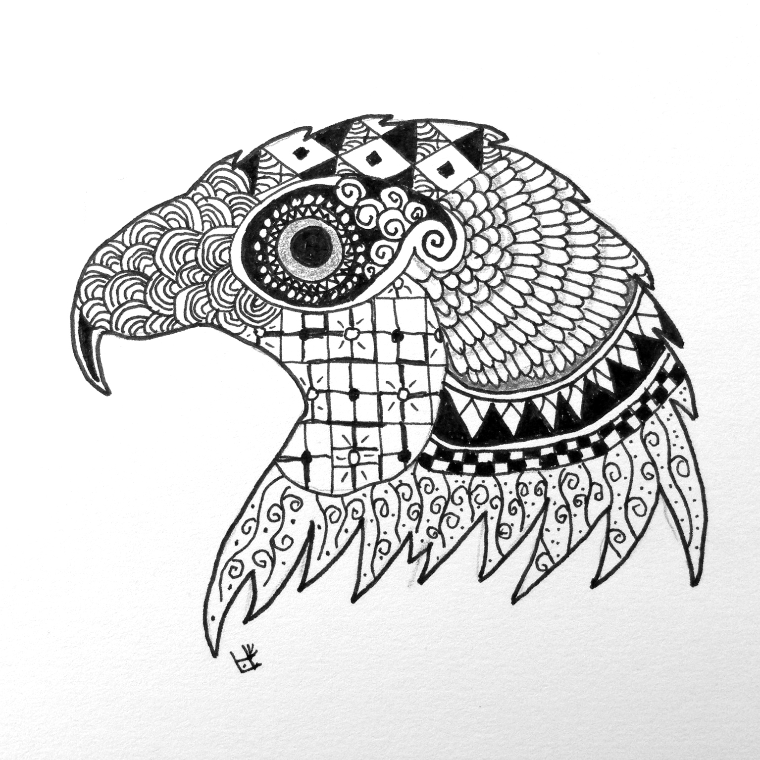 1535x1535 Zentangle, Zoo, Eagle, Black And White, Www.zentanglezoo.blogspot