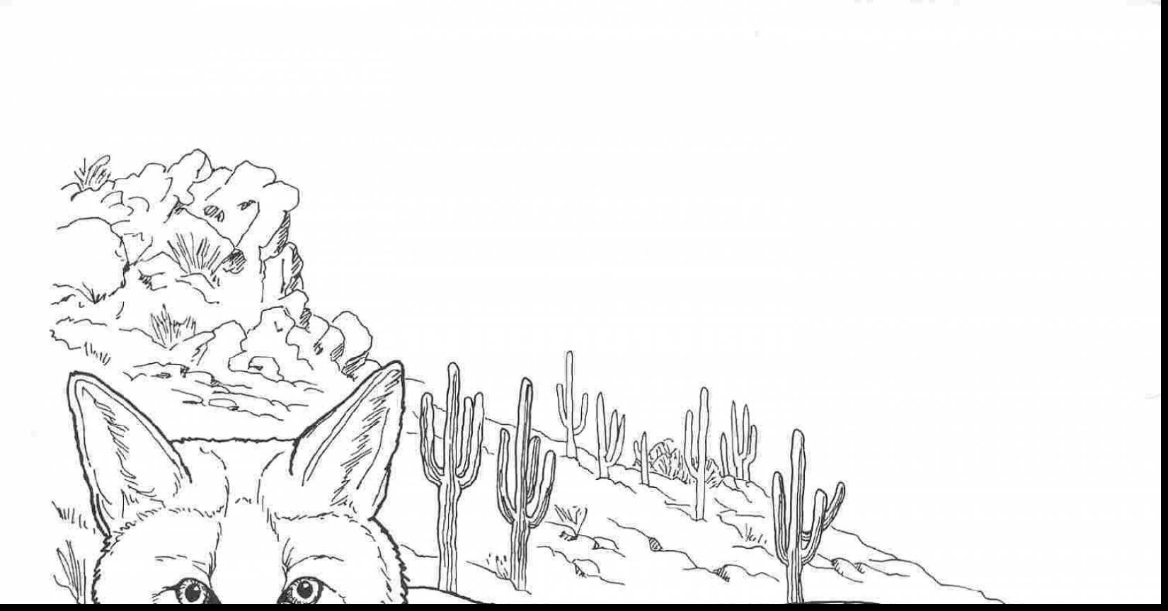 1650x863 Fabulous Desert Animals Coloring Pages Printable With Desert