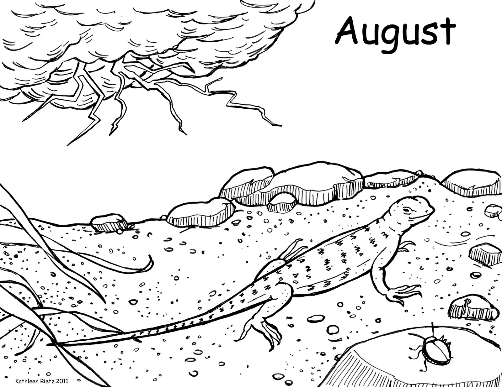 pond ecosystem coloring pages | Desert Ecosystem Drawing at GetDrawings | Free download