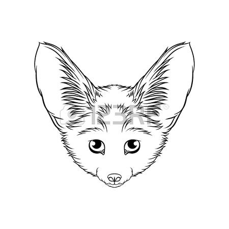 450x450 185 Desert Fox Stock Vector Illustration And Royalty Free Desert
