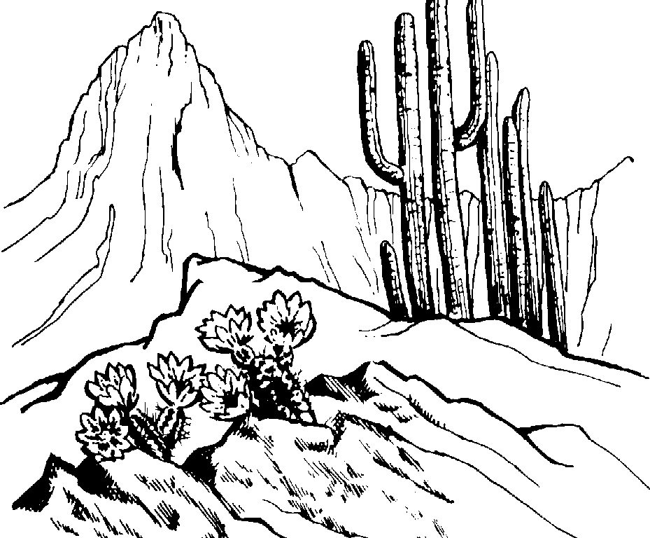 929x768 Desert Scenes Coloring Pages Print Manna In The Desert Coloring