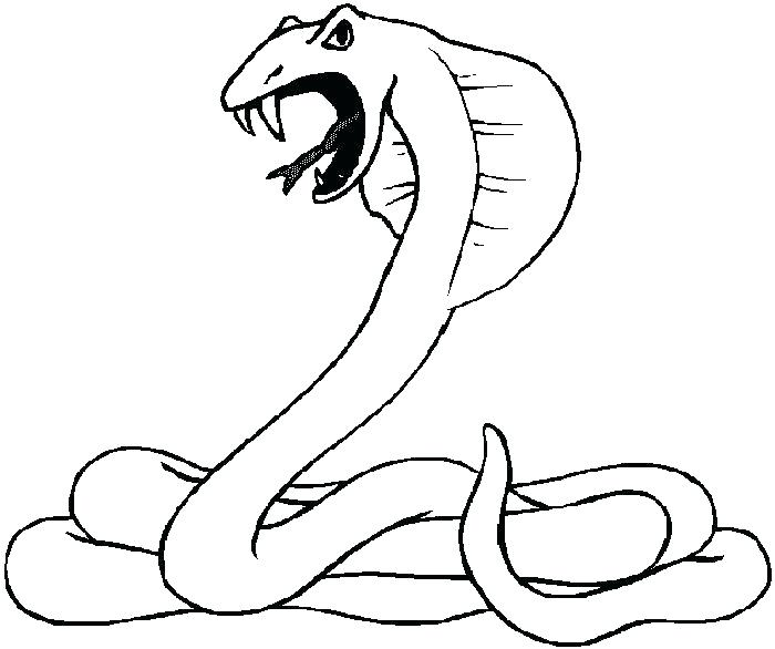 700x586 Desert Animals Coloring Pages Codetracer.co
