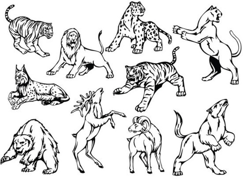 498x368 Line Wild Animal Drawings Free Vector Download (101,554 Free