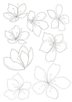 235x333 Set Of Flowers. Vector Illustration. Drawing Flowers, Drawings
