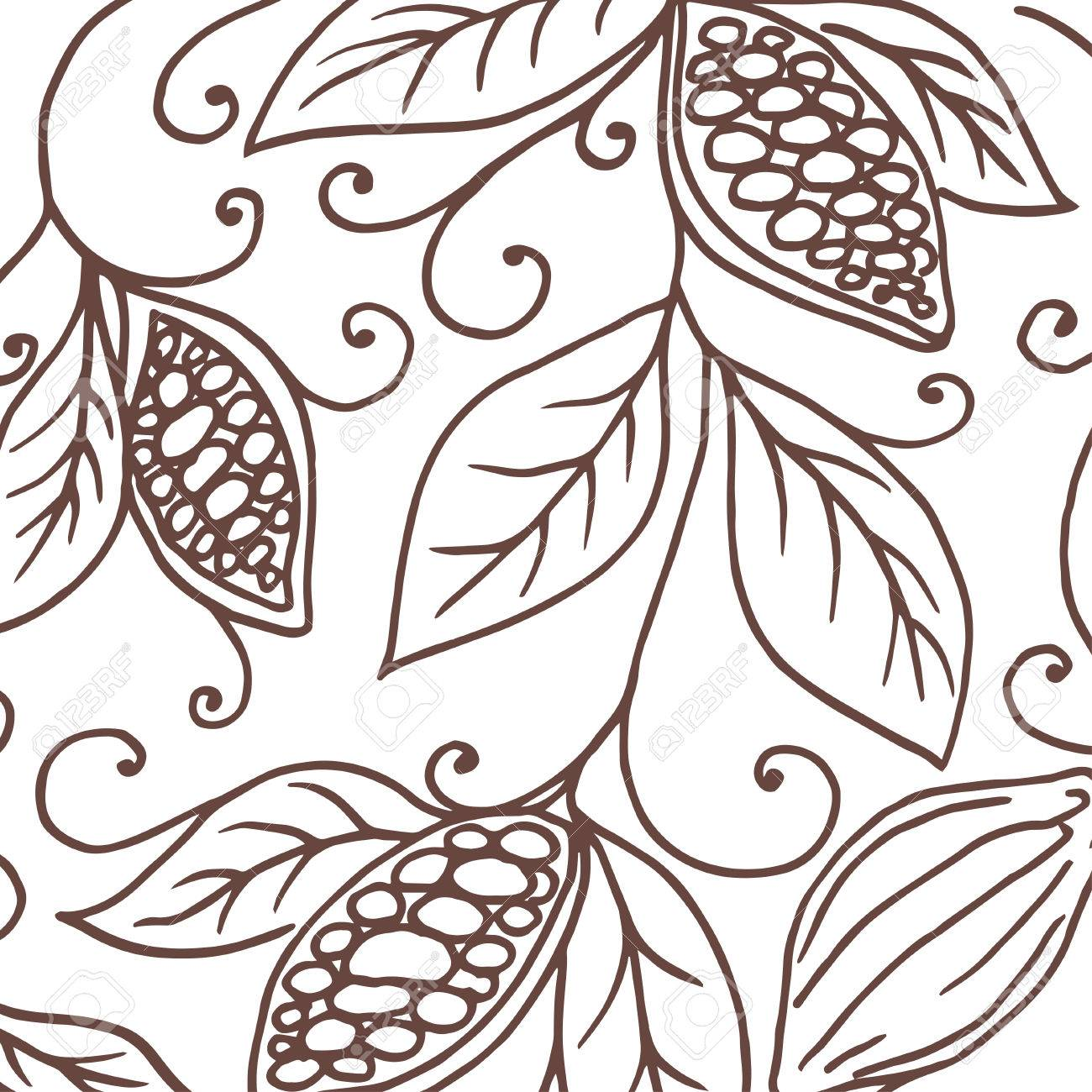 1300x1300 Hand Drawing Background Of Cocoa Beans. Vector Illustration