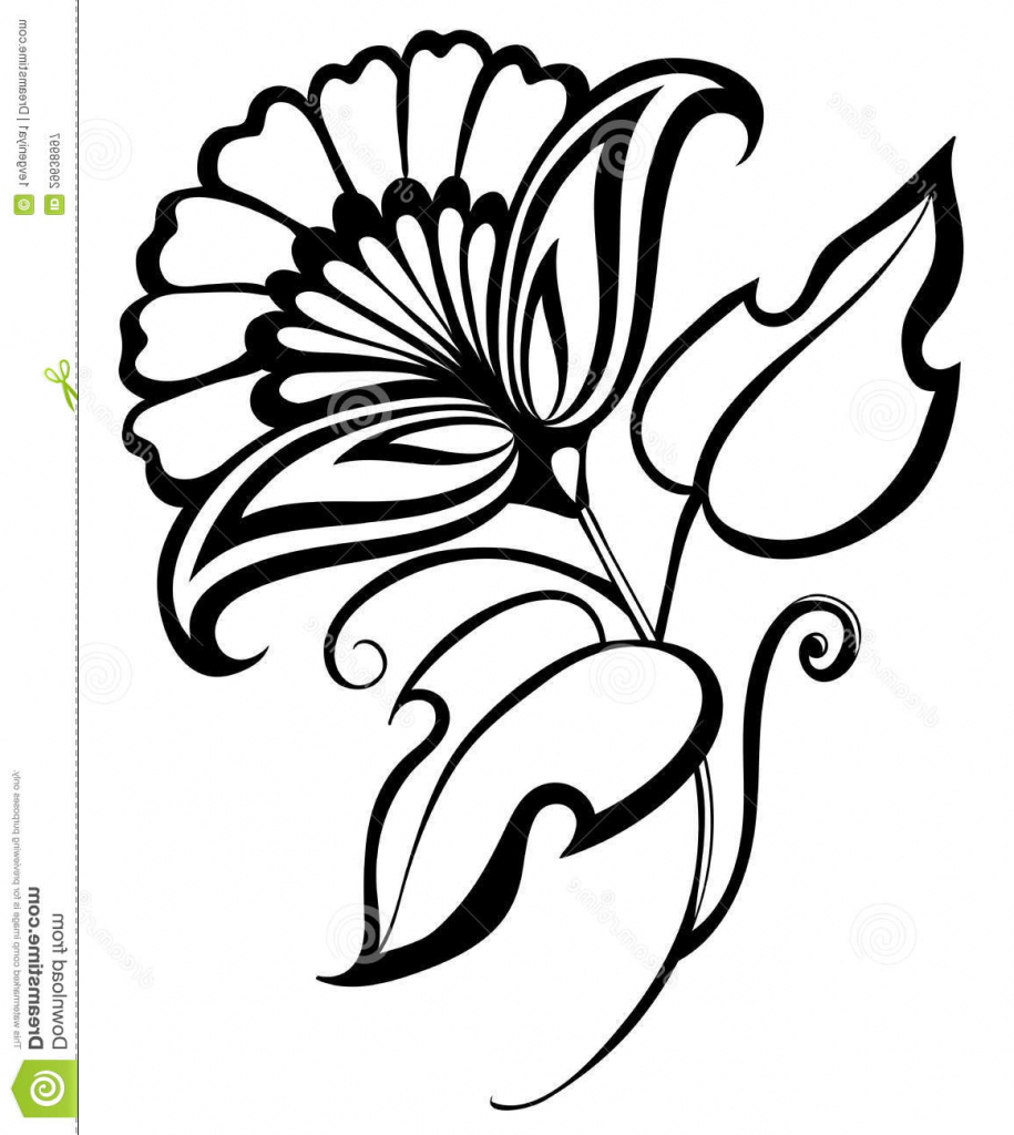 915x1024 Drawing Flowers Designs 1000 Images About Flower Drawings