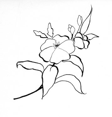 Designs Of Flowers Drawing At Getdrawingscom Free For Personal