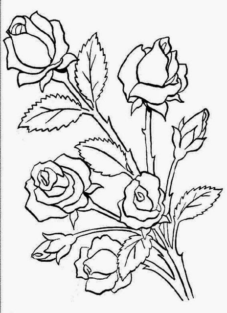 464x640 Flowers Sketches Designs Many Flowers