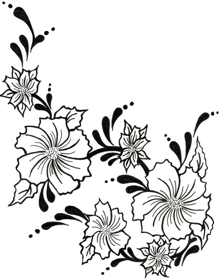736x938 Pictures Sketches Of Flowers And Vines,