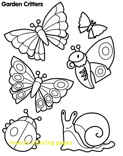 520x659 Insects Coloring Pages With Draw Insects Coloring Pages New