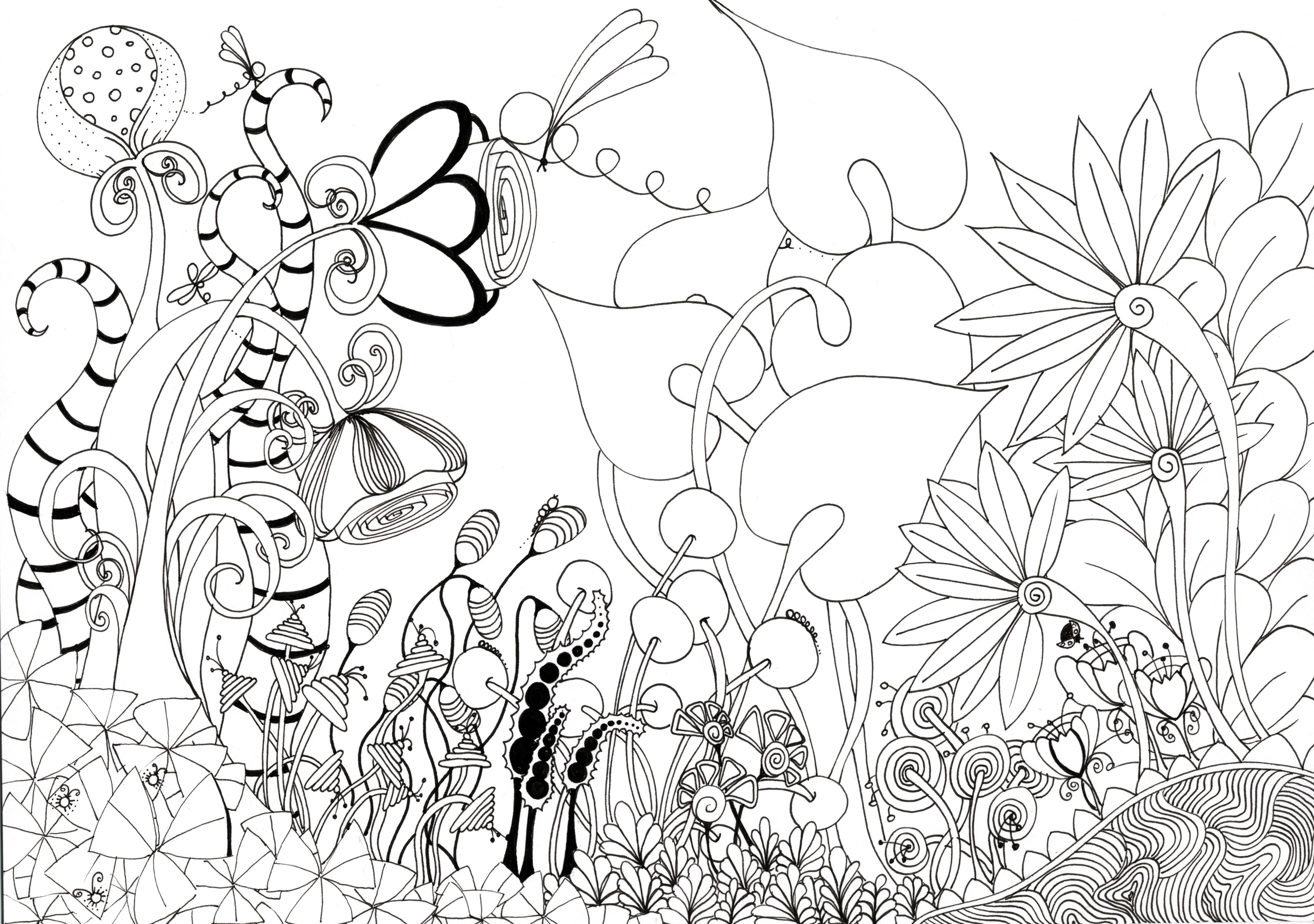 3543x2491 Best Flower Garden Drawing For With Home ~ Garden Trends