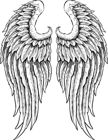 349x450 Detailed Angel Wings With Feathers Black White Vinyl