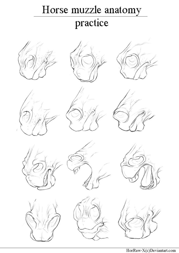 736x1041 1066 Best Drawings Images On Draw Hair, Drawing