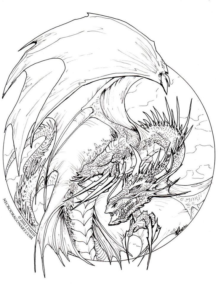 Detailed Dragon Drawing