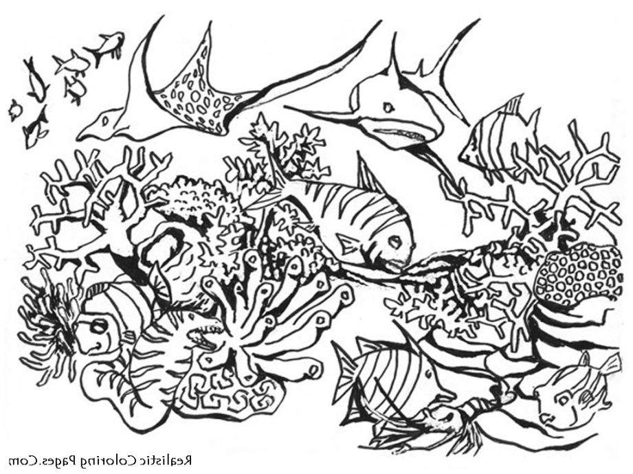 Detailed Dragon Drawing at GetDrawings | Free download
