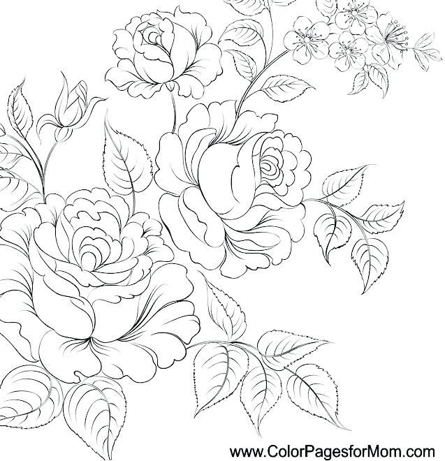 Detailed Flower Drawing At GetDrawings.com