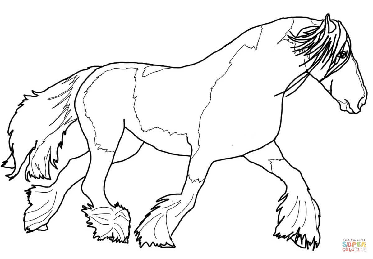 1200x835 Gypsy Vanner Horse Coloring Page Free Printable Pages