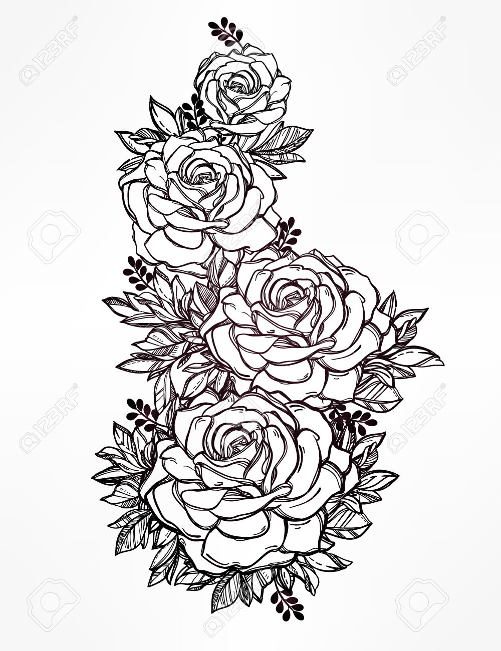 Detailed Rose Drawing
