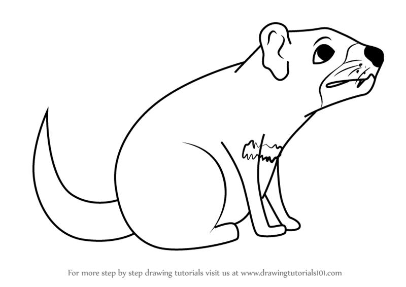 800x566 Learn How To Draw A Cartoon Tasmanian Devil (Cartoon Animals) Step