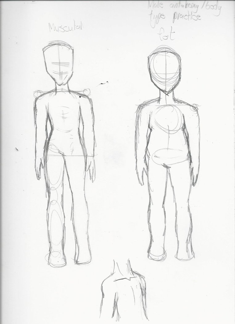 762x1048 Male Body Type Anatomy Practice By Miss Dreamerkat