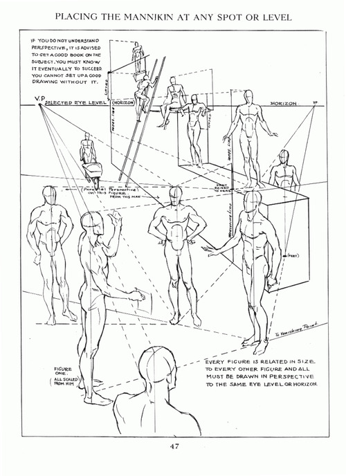 500x688 Art Tutorials And References Diy 002 Human Anatomy Amp Figure Drawing