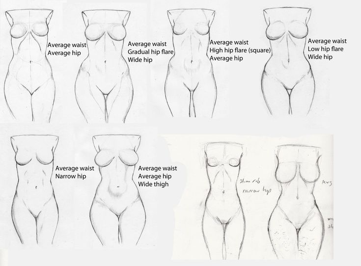 735x542 231 Best Body Drawing Tutorial Images On Anatomy