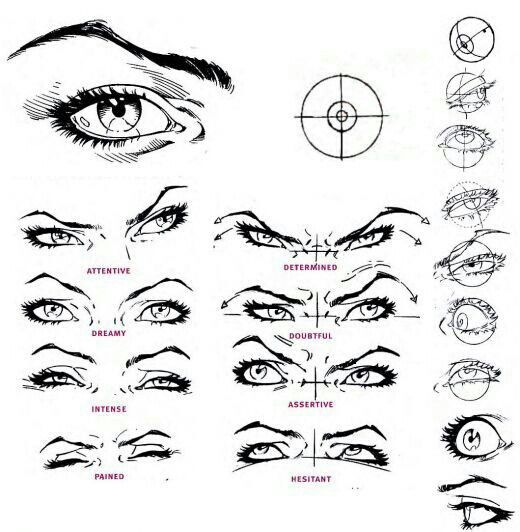 Different Types Of Eyes Drawing