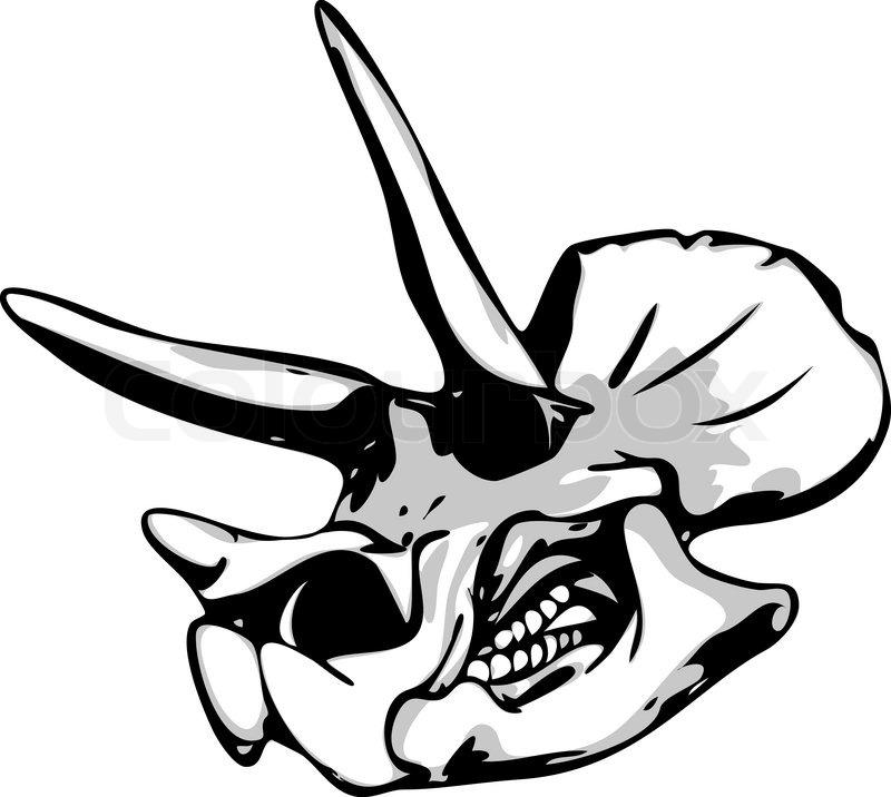 dinosaur bone drawing at getdrawings com free for personal use rh getdrawings com  dinosaur bones clipart