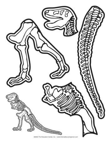 355x460 Dinosaur Skeleton, Lesson Plans