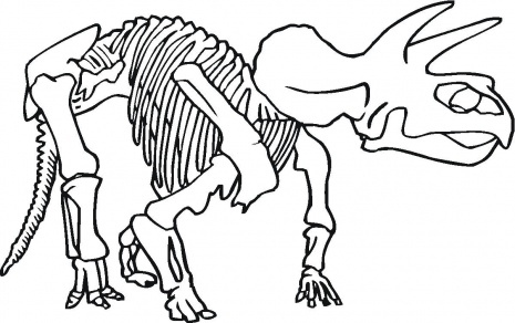 465x292 Coloring Pages Dinosaur Bones Coloring Pages